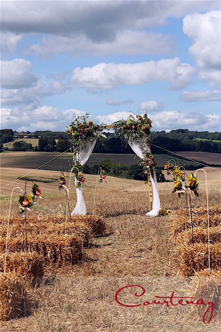 Countryside wedding ceremony with live music